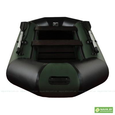 Лодка ELFIN В-275 зеленая